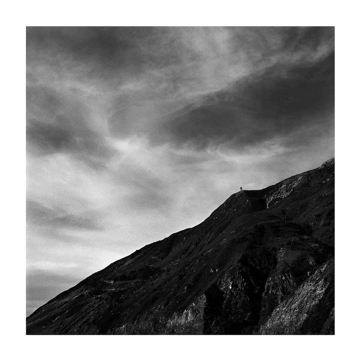Lone tree in Big Sur along Highway 1 shot on Ilford FP4